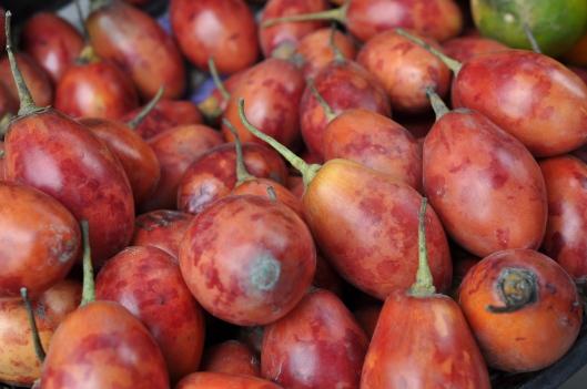 Tree Tomatoes at Otavalo Market