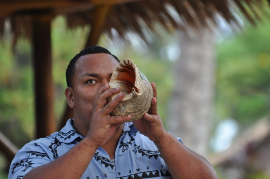 Tongan man blows into conch shell