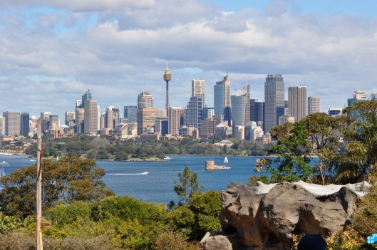 The best view of the Sydney skyline is from Taronga Zoo. Totally.