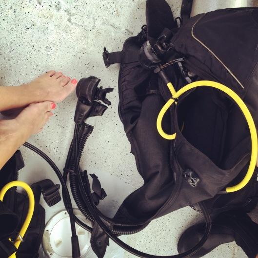 Diving Isla Contadora